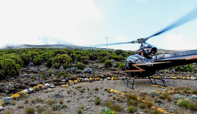 amref helicopter