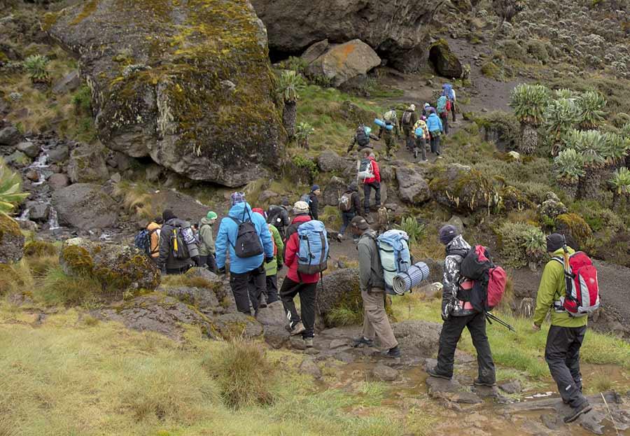daily kilimanjaro schedule