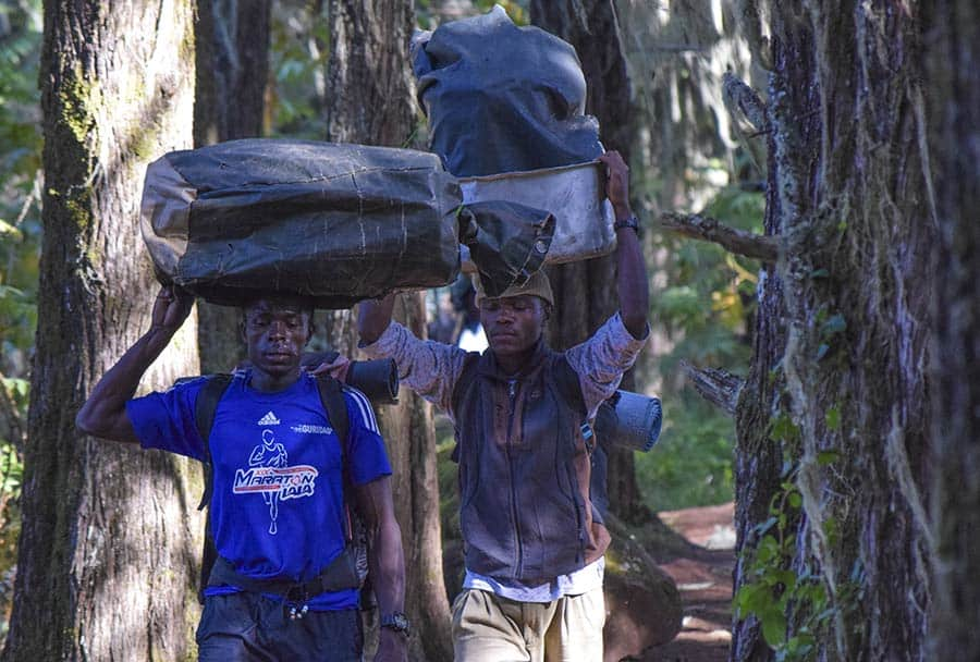 porters in the rainforest