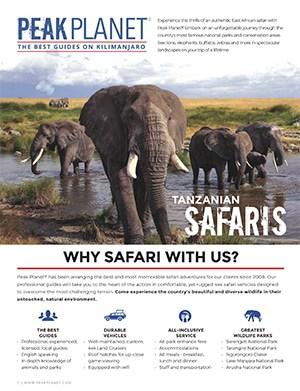 safari brochure