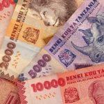 tanzanian shillings