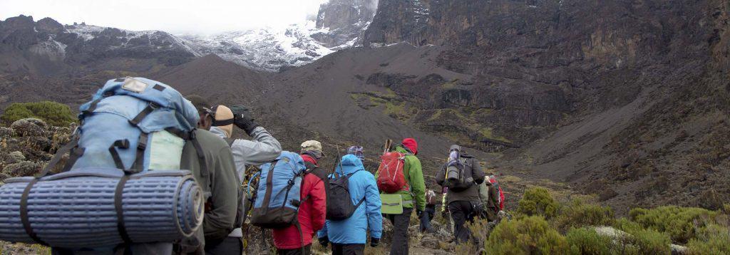 kilimanjaro climb guides