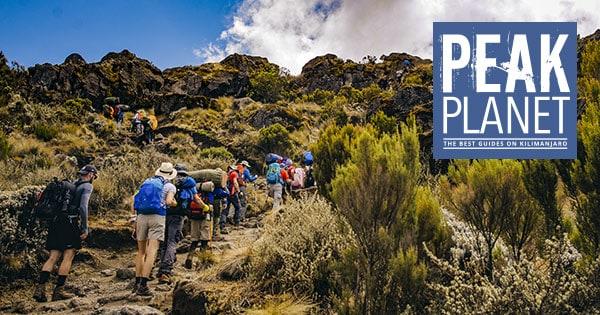 peak planet review