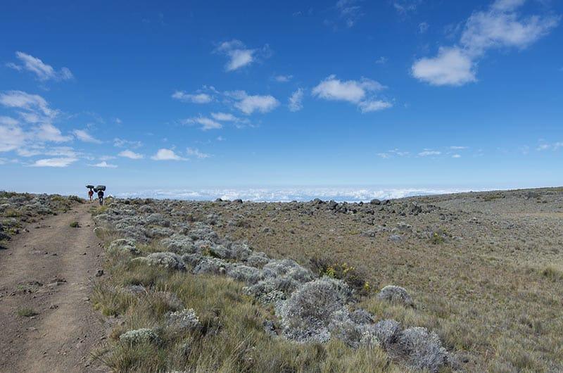 Kilimanjaro trail with porters