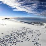 walk up kilimanjaro